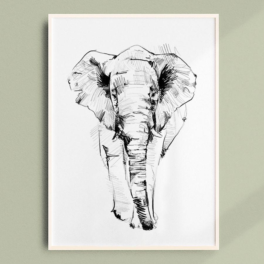 elefante_G2